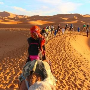 تور کویر کاراکال و بازدید از بافق یزد